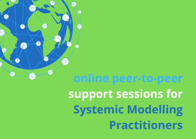 Online Systemic Modelling Support Sessions